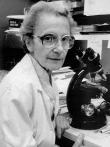 Dr. Lotte Strauss